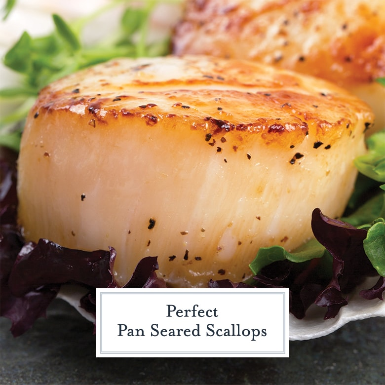 side view of a seasoned and seared scallop