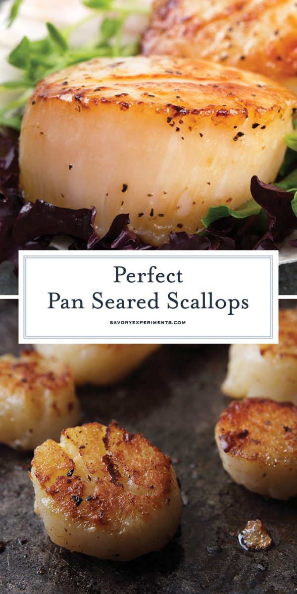 how to cook scallops for pinterest