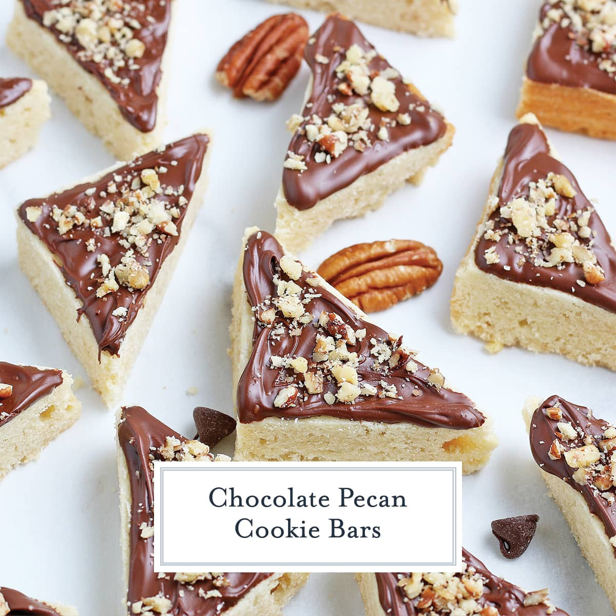 chocolate frosted sugar cookie bars with chopped pecans