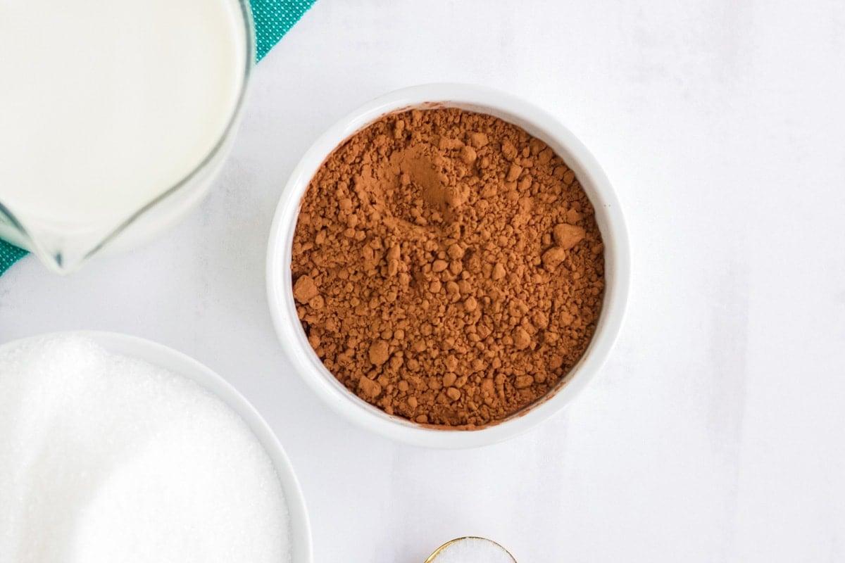small white bowl of cocoa powder