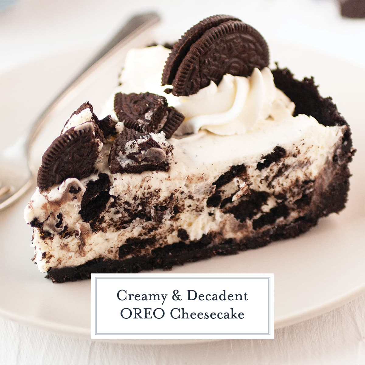 Oreo Cheesecake Cookie Crust With No Bake Oreo Filling