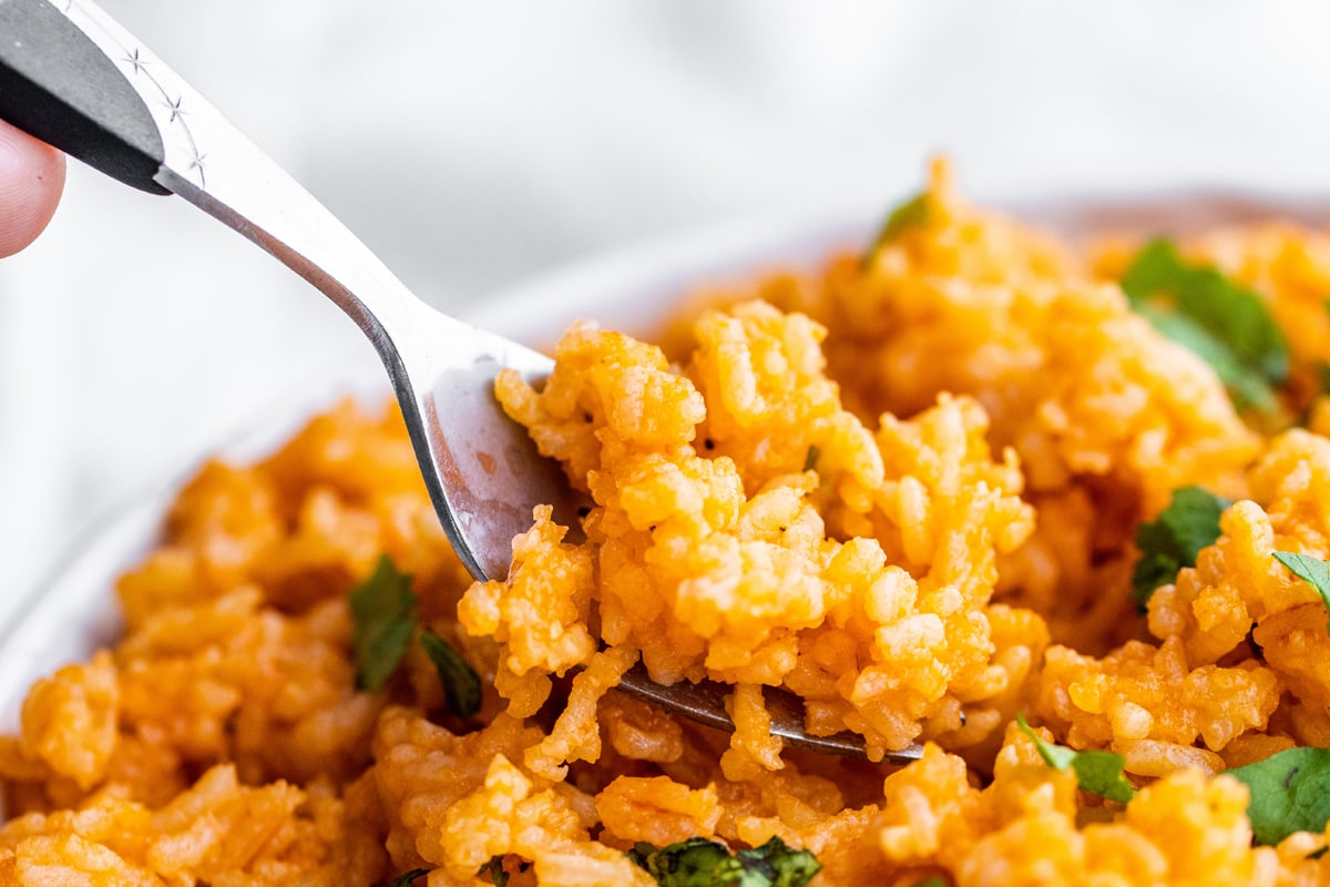 spoon digging into spanish rice