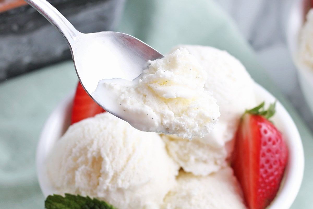 spoon of vanilla ice cream with bean flacks