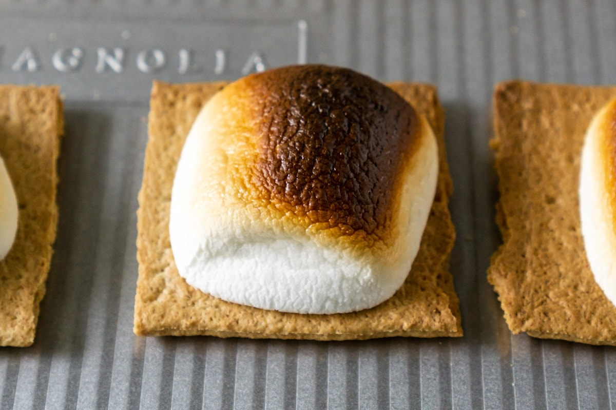 close up of charred marshmallow