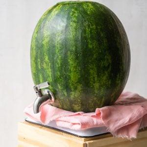 watermelon keg on a pink napkin