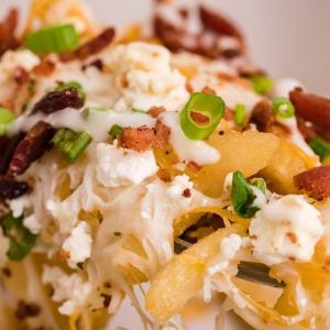 close up of ranch bacon cheese fries