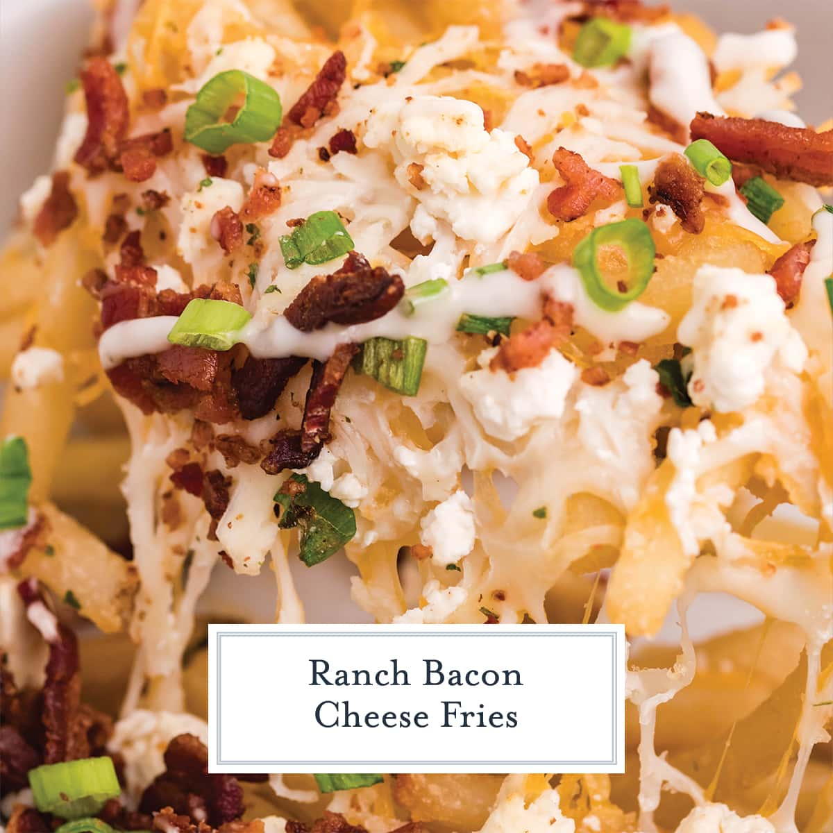 close up of scoop of bacon cheese fries