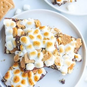 overhead plate of smores brownies