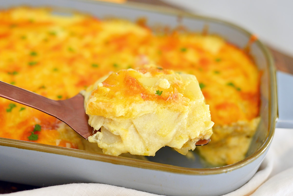 cheesy potatoes on a spatula